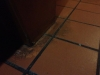 Tile-and-Grout-Guys-example1-43